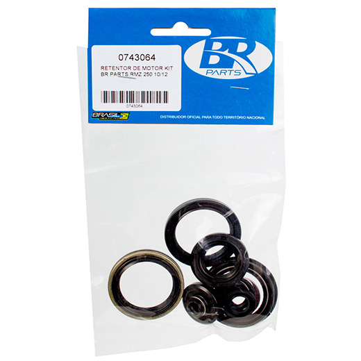 Kit Retentor de Motor BR Parts RMZ 250 10